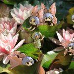 Fleur illustrée - Papillons & lotus